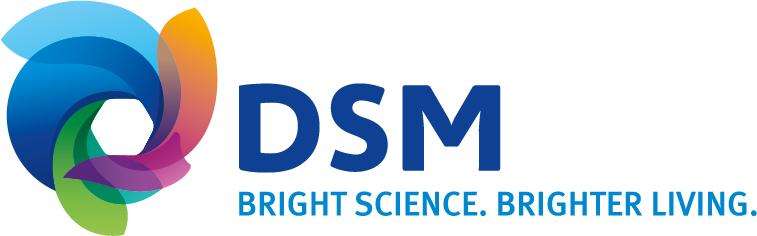 DSM Engineering Plastics B.V.